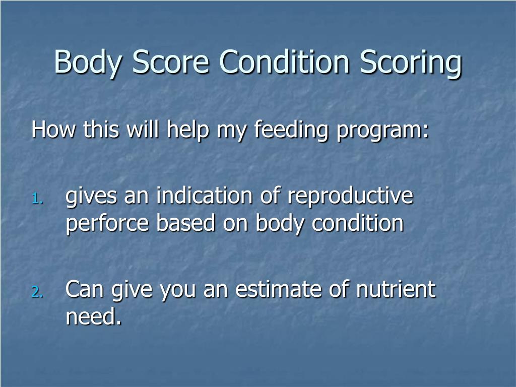 Body Score Condition Scoring