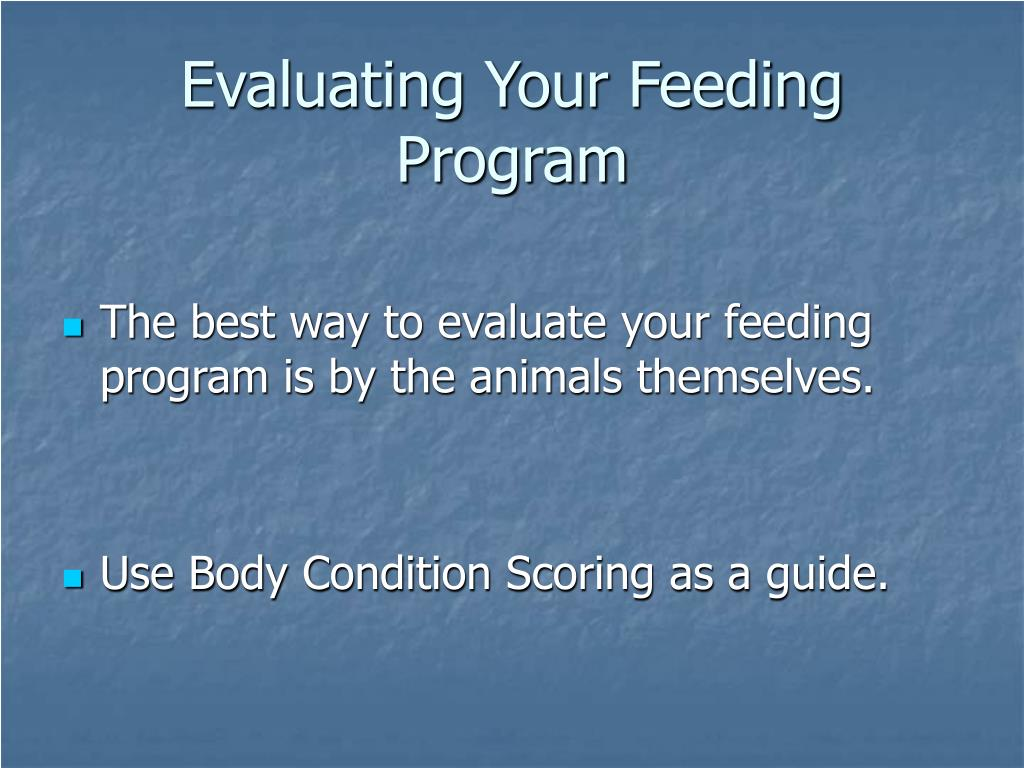 Evaluating Your Feeding Program