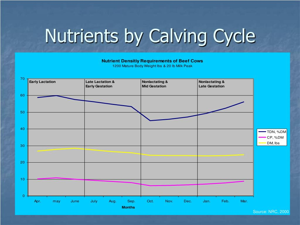 Nutrients by Calving Cycle