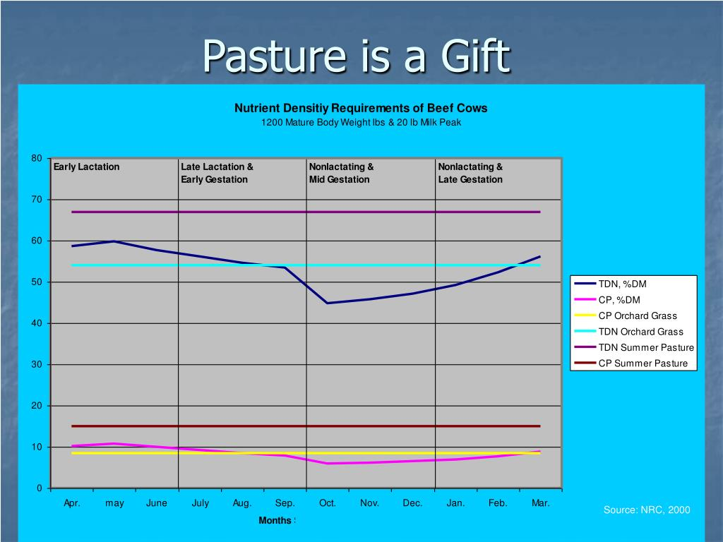 Pasture is a Gift
