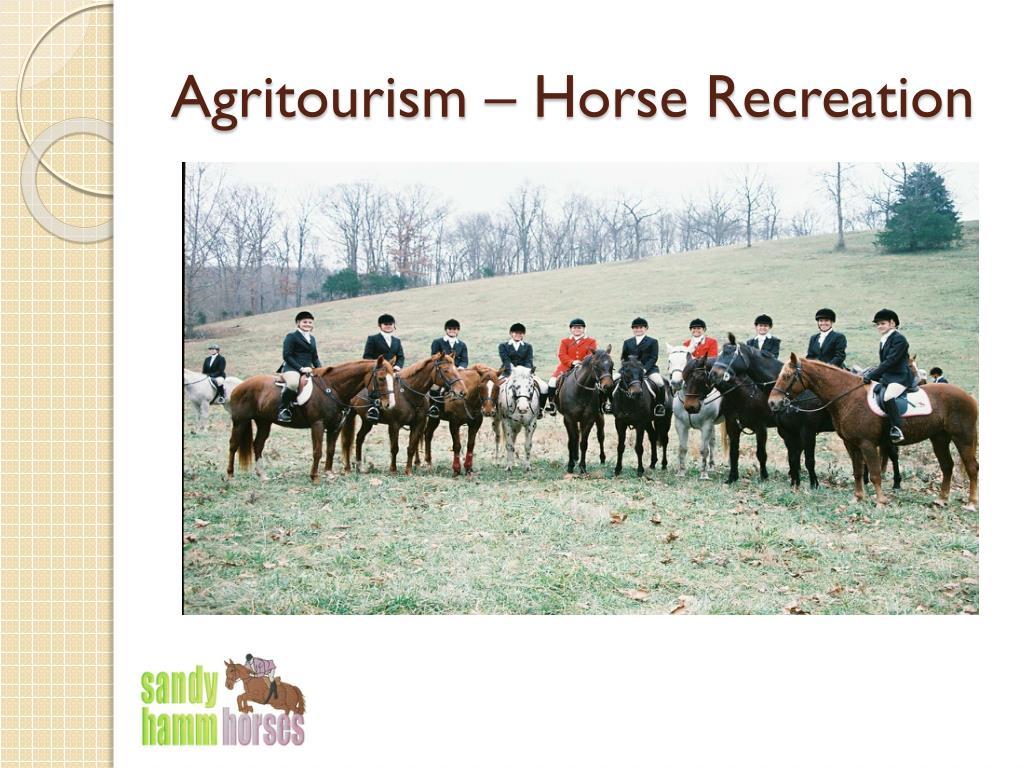 Agritourism – Horse Recreation