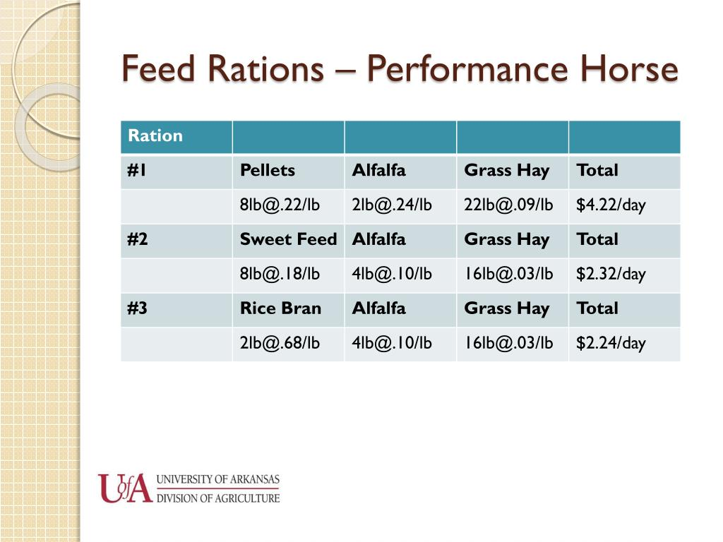 Feed Rations – Performance Horse