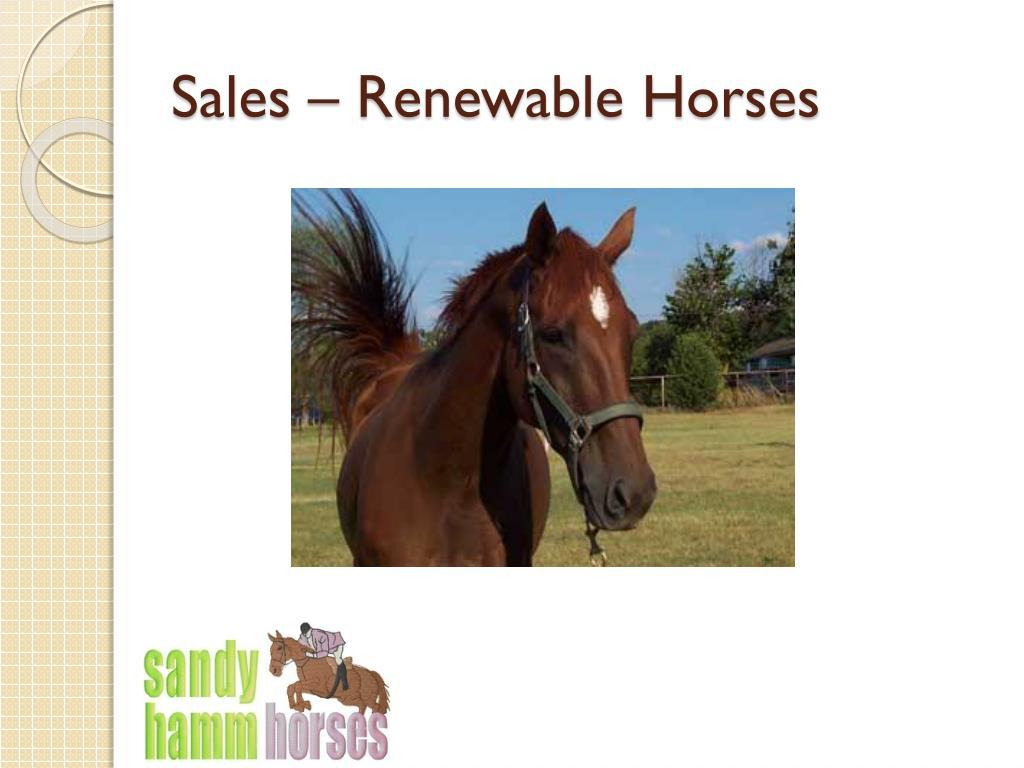 Sales – Renewable Horses