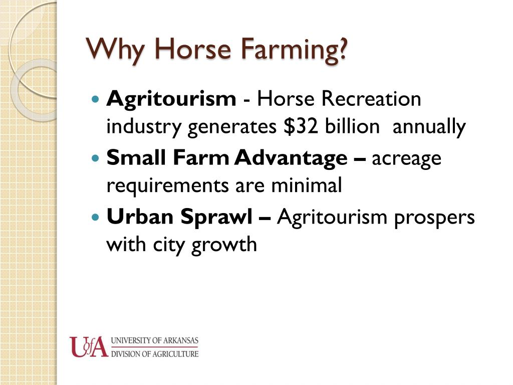 Why Horse Farming?
