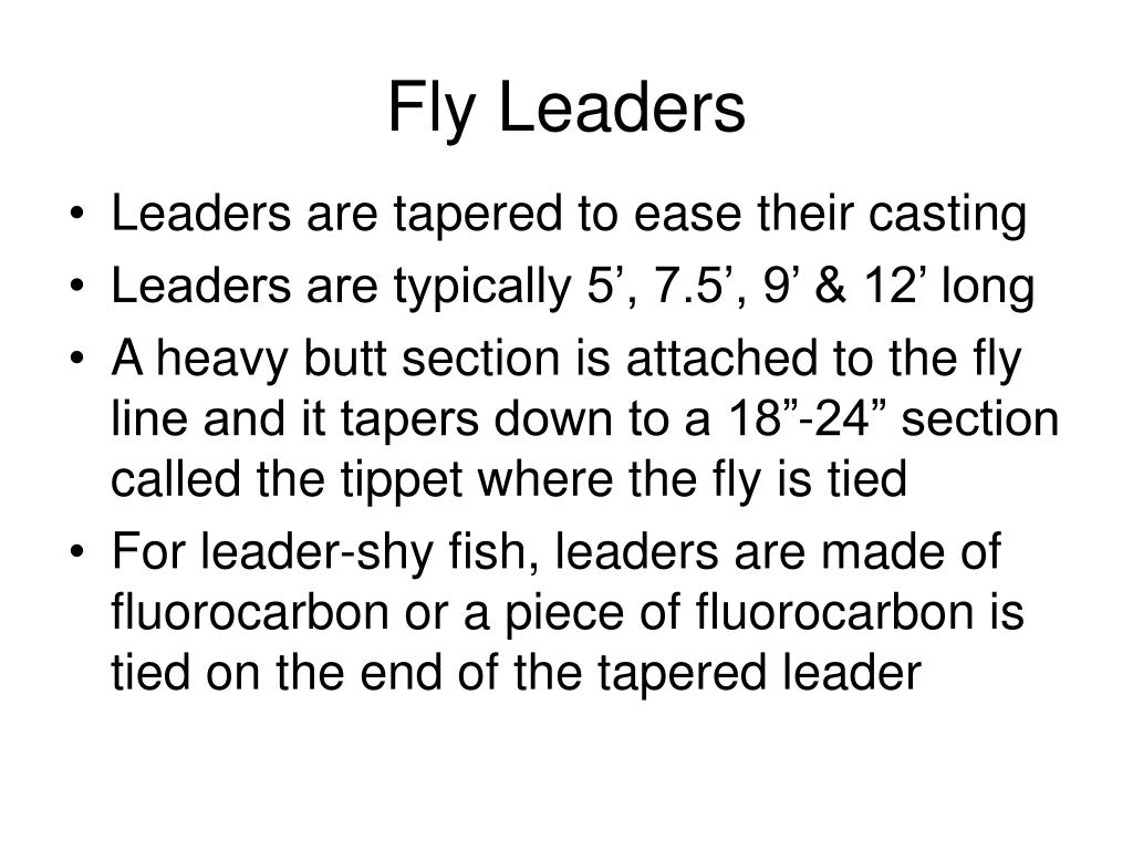 Fly Leaders