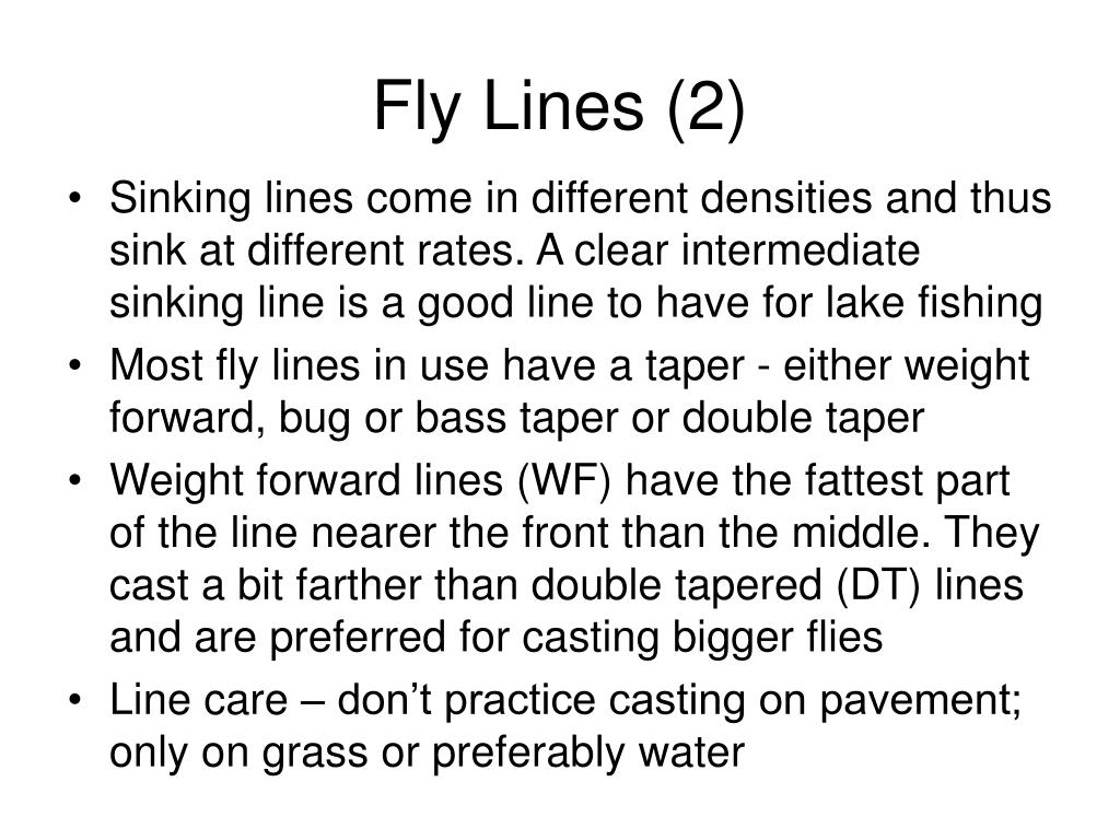 Fly Lines (2)
