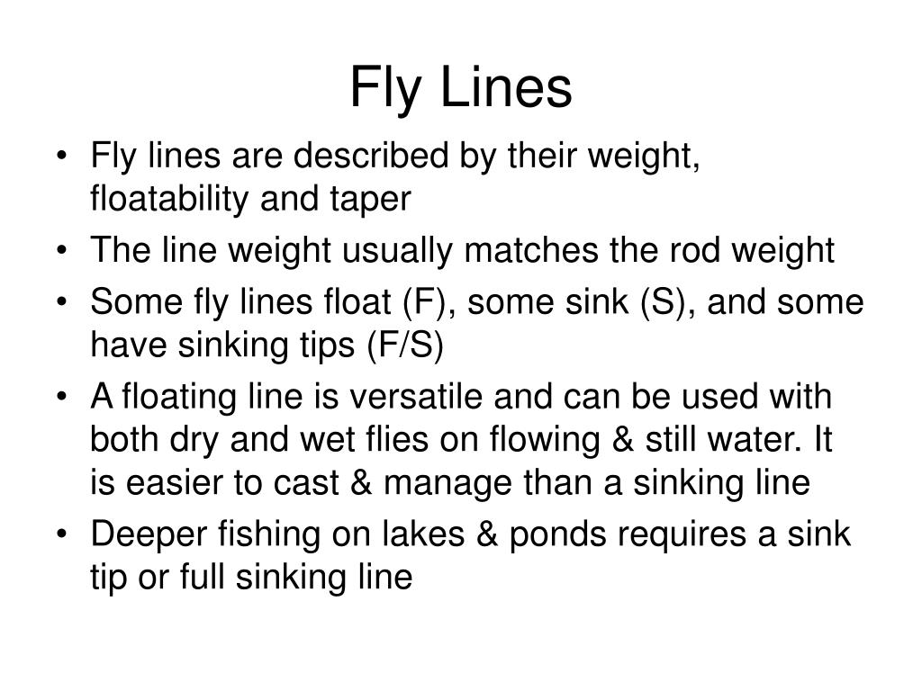 Fly Lines