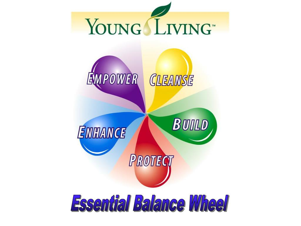 Essential Balance Wheel