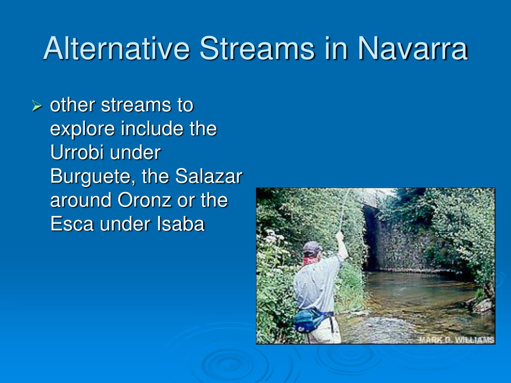 Alternative Streams in Navarra