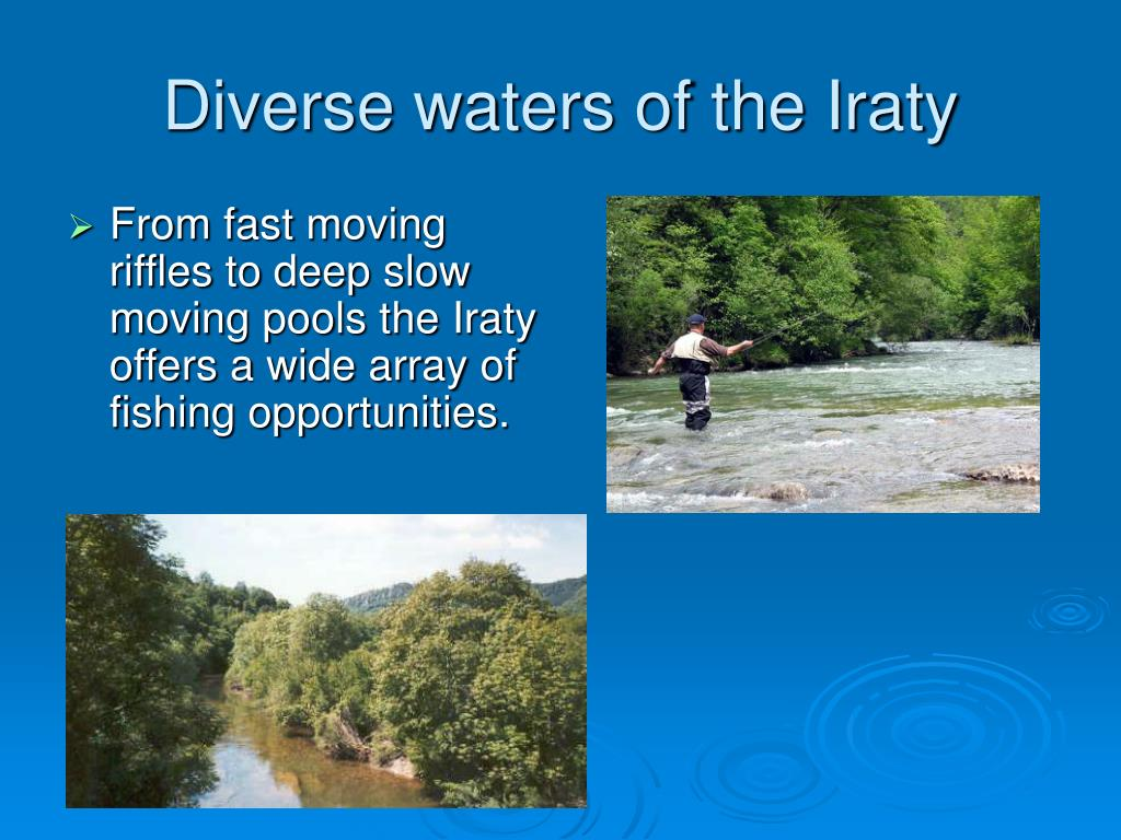 Diverse waters of the Iraty