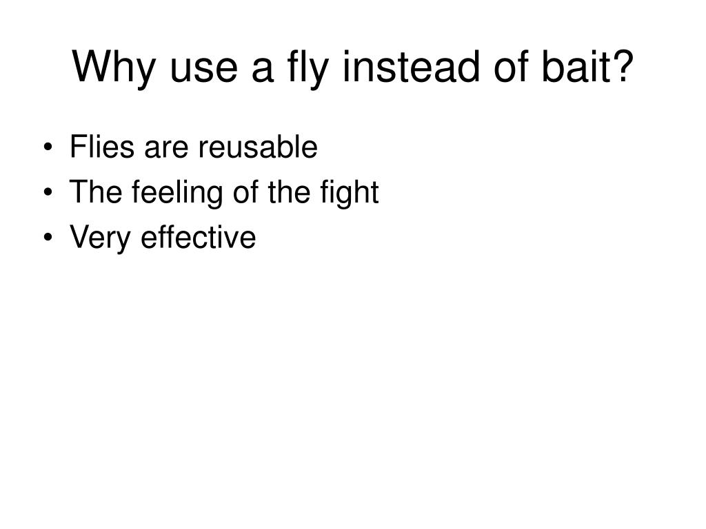 Why use a fly instead of bait?