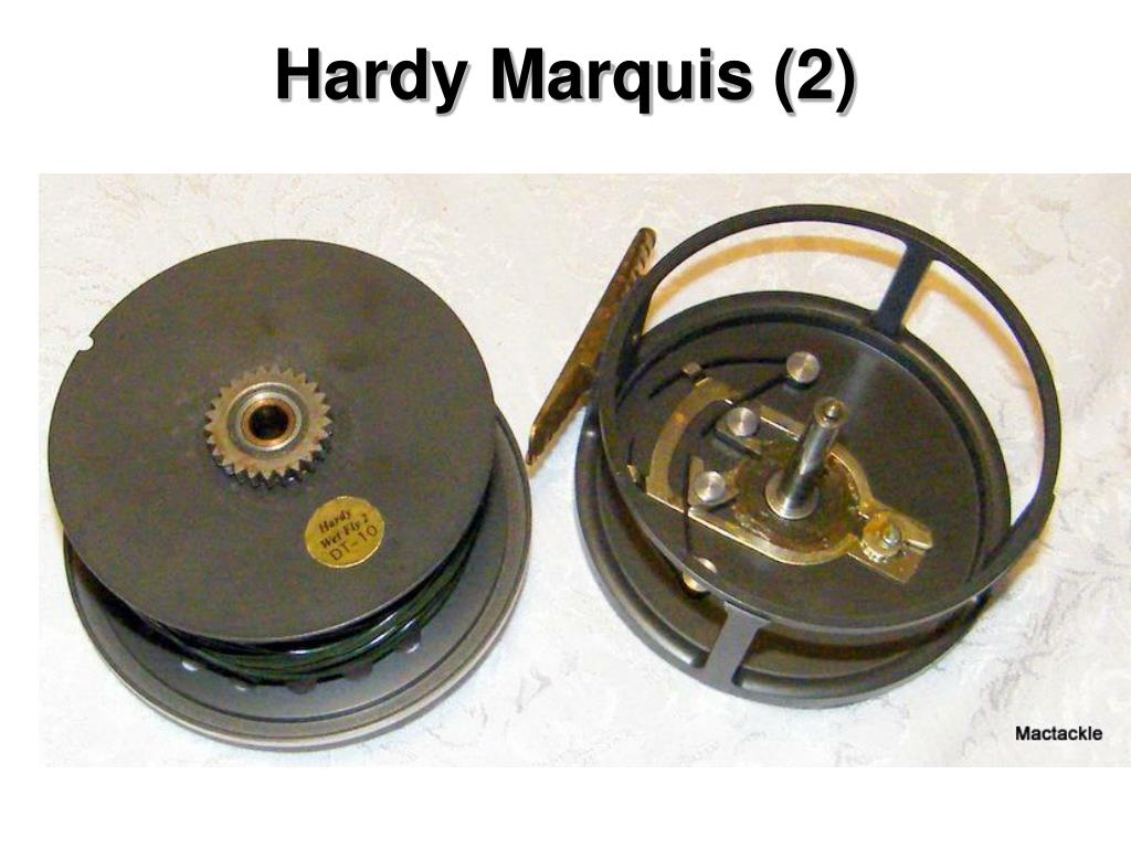 Hardy Marquis (2)