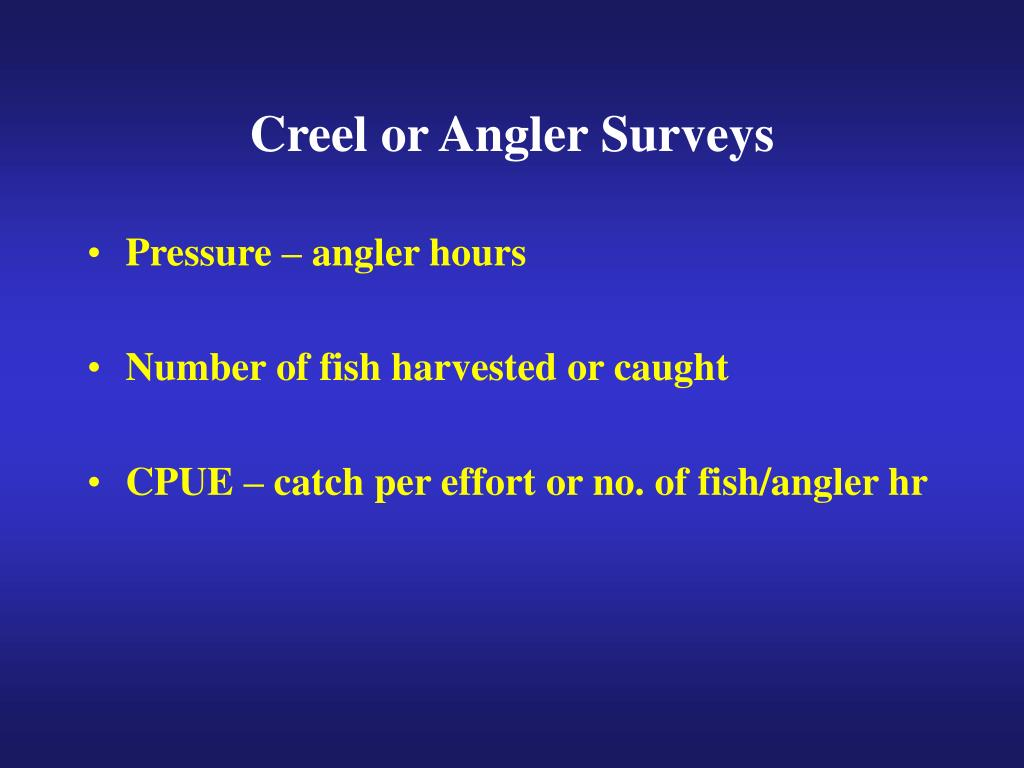 Creel or Angler Surveys