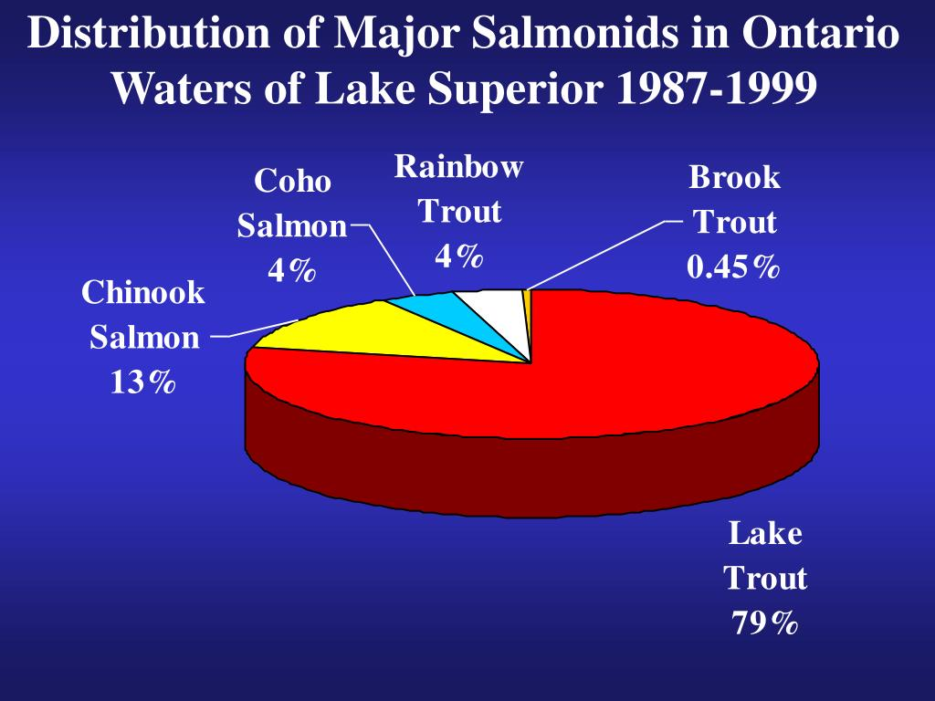 Distribution of Major Salmonids in Ontario Waters of Lake Superior 1987-1999