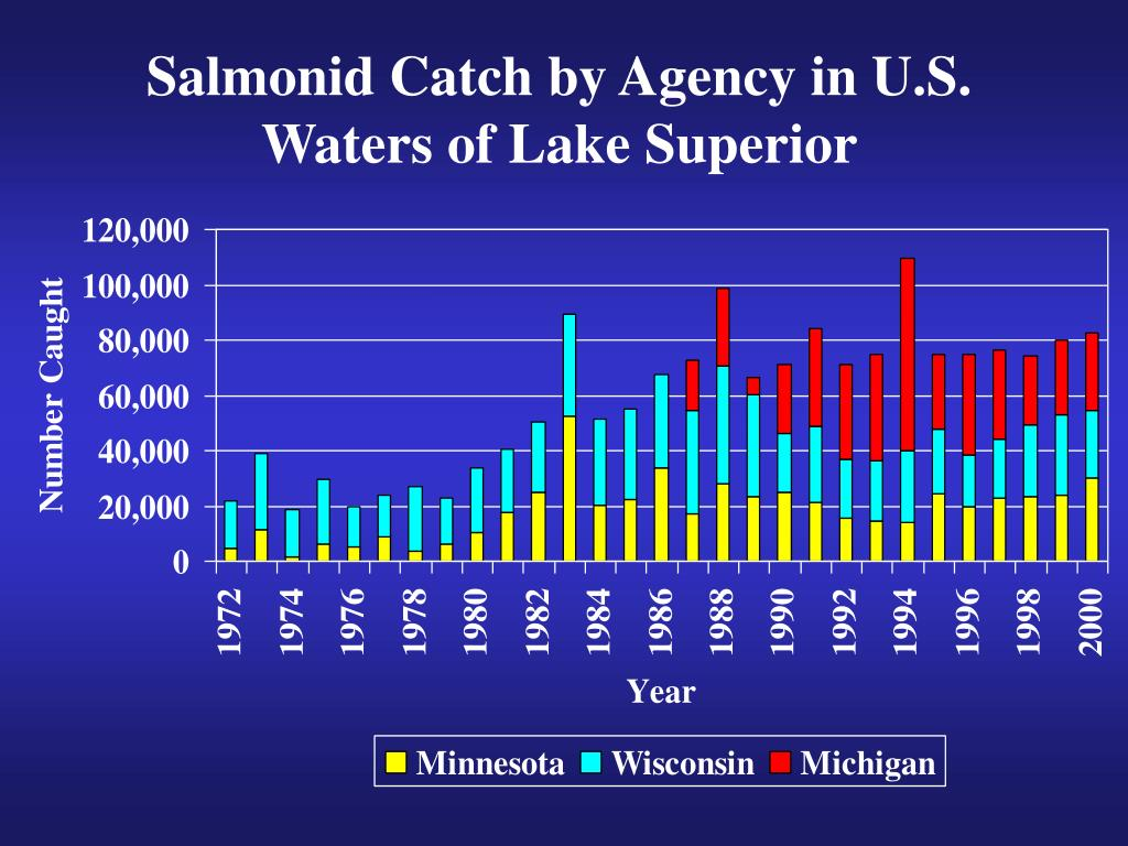 Salmonid Catch by Agency in U.S. Waters of Lake Superior