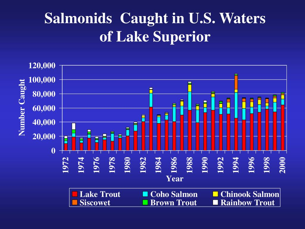 Salmonids  Caught in U.S. Waters