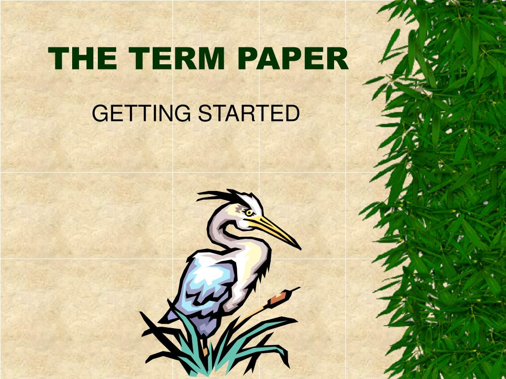 THE TERM PAPER