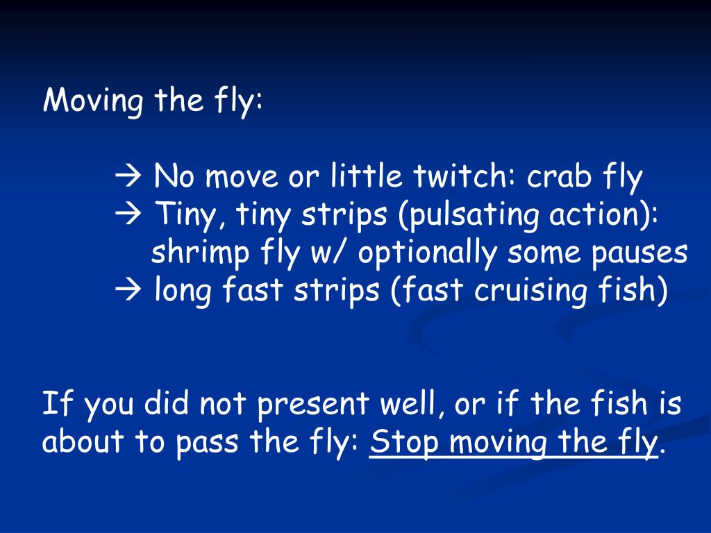 Moving the fly: