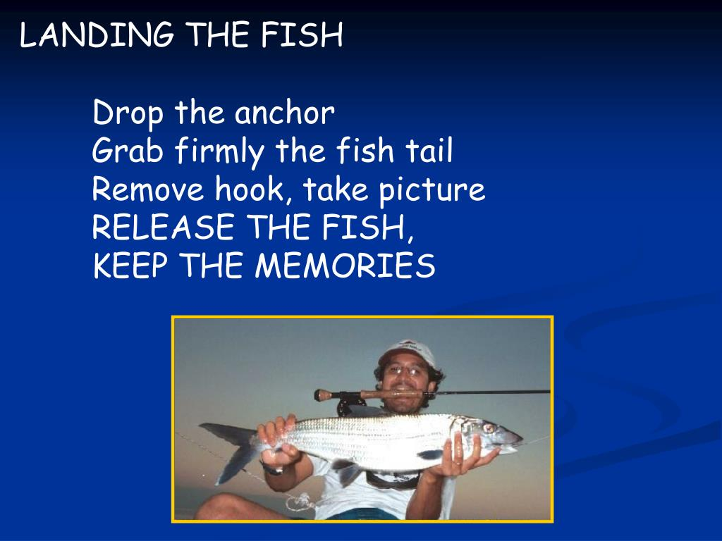 LANDING THE FISH