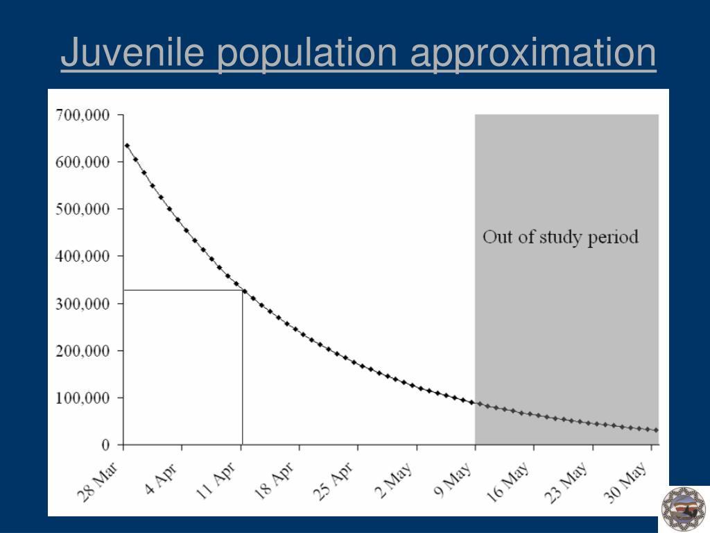 Juvenile population approximation