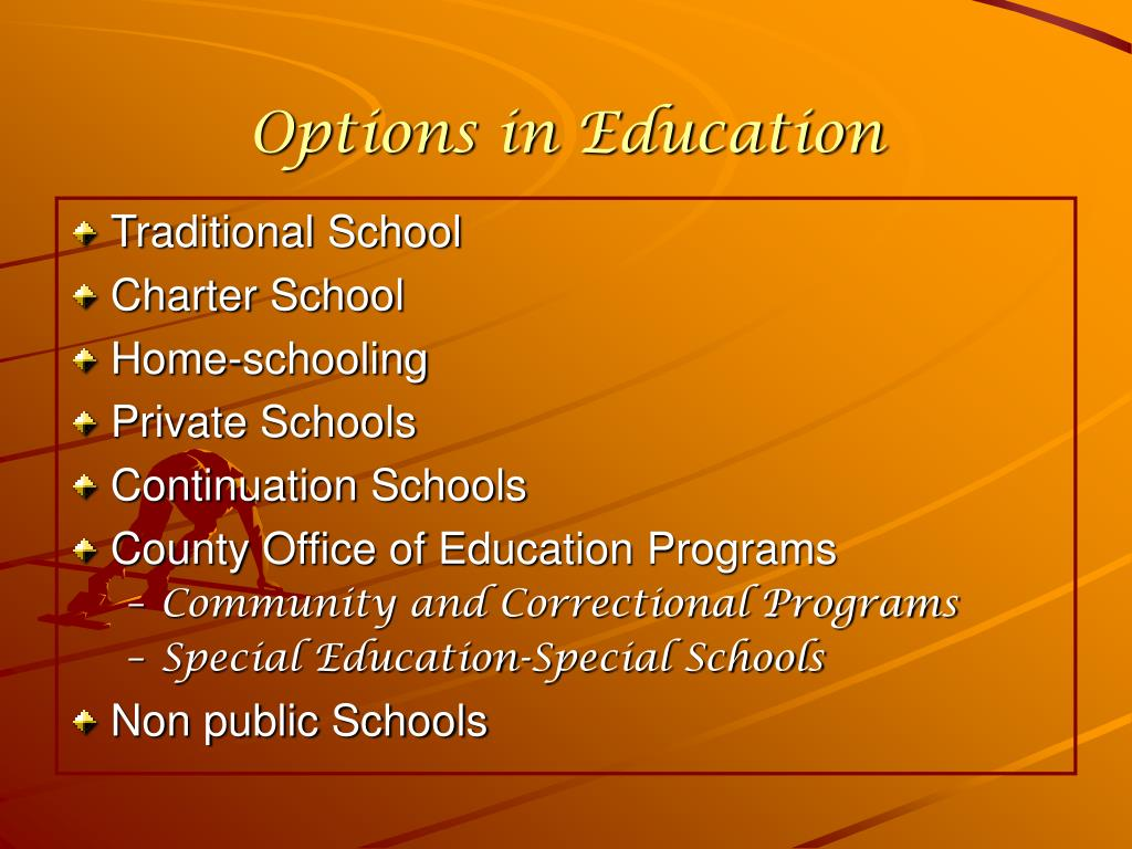 Options in Education