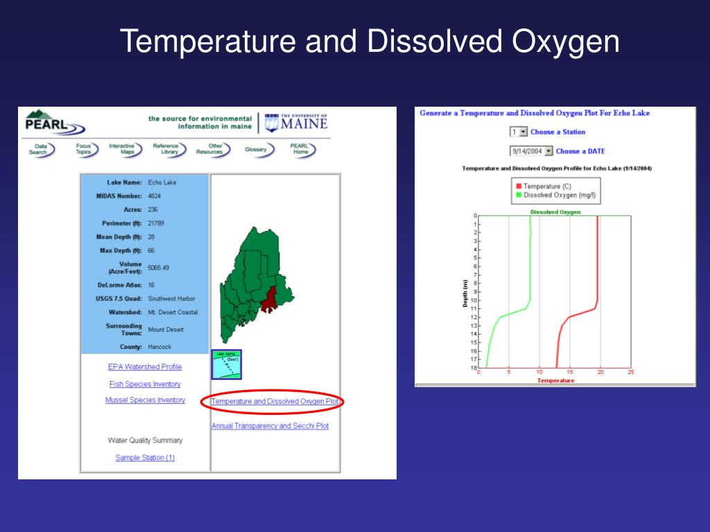 Temperature and Dissolved Oxygen