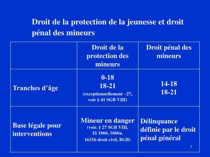 Droit de la protection de la jeunesse et droit pénal des mineurs
