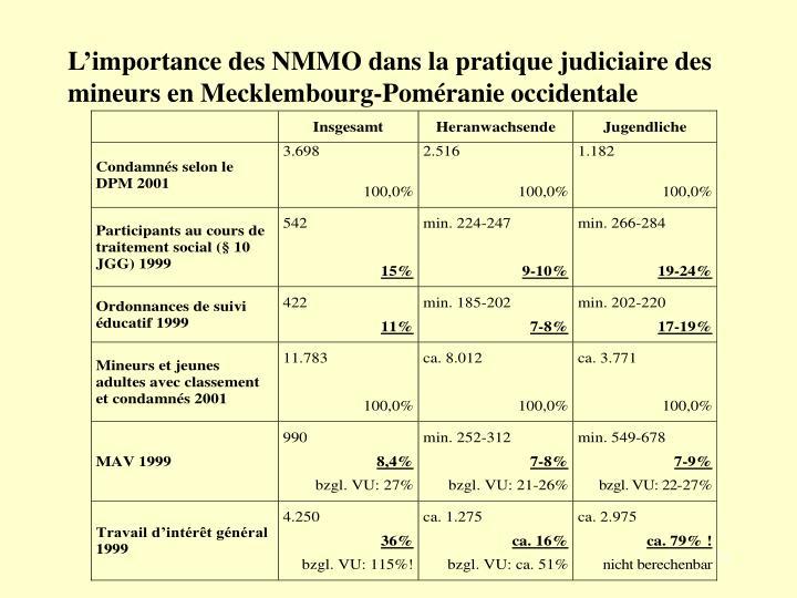L'importance des NMMO dans la pratique judiciaire des mineurs en Mecklembourg-Poméranie occidentale