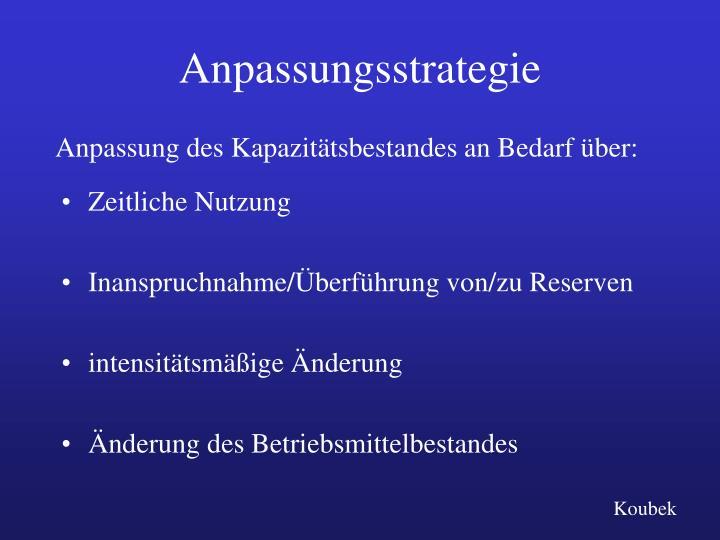 Anpassungsstrategie