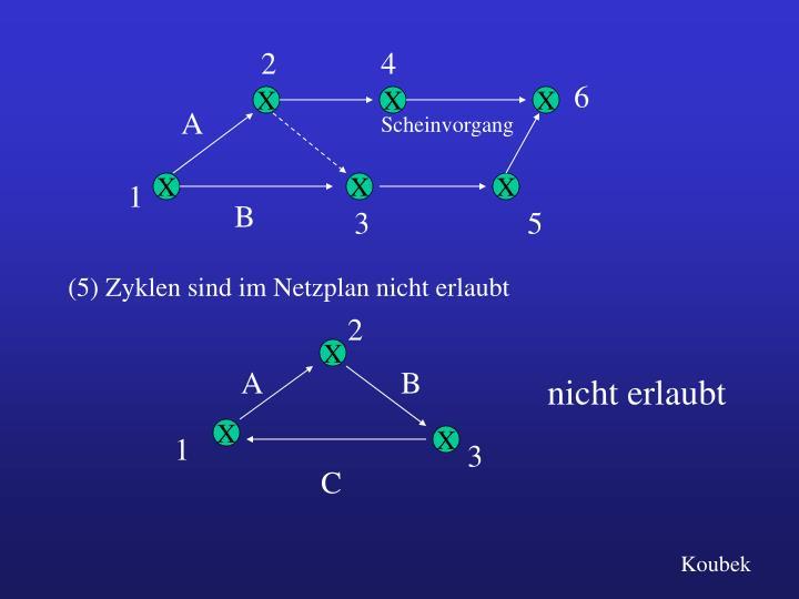 (5) Zyklen sind im Netzplan nicht erlaubt
