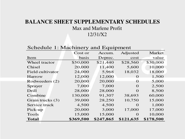 BALANCE SHEET SUPPLEMENTARY SCHEDULES