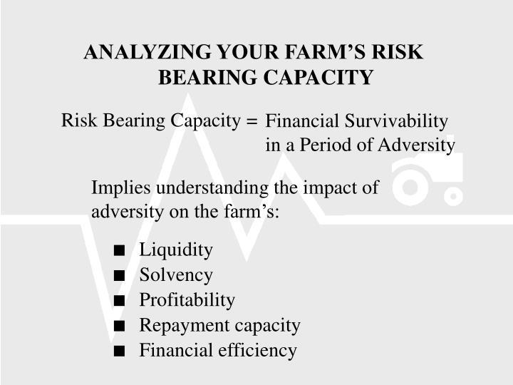 Risk Bearing Capacity =