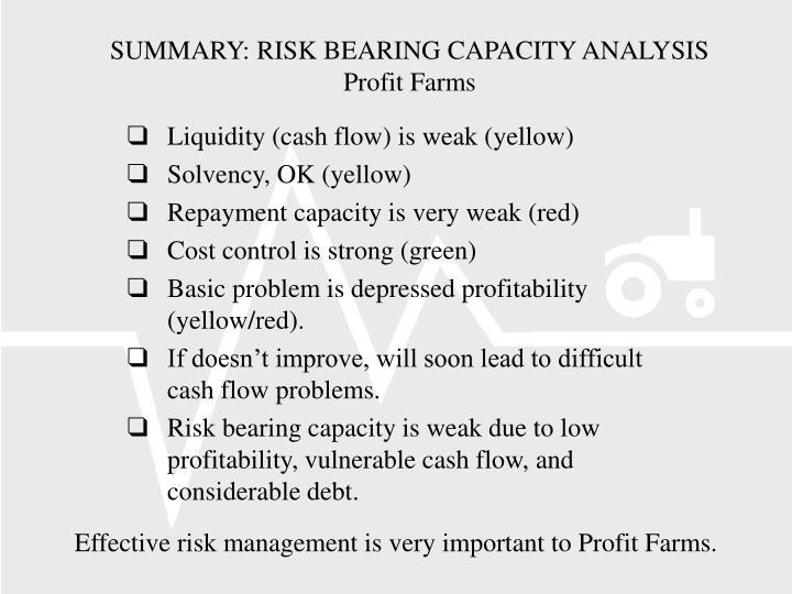 SUMMARY: RISK BEARING CAPACITY ANALYSIS