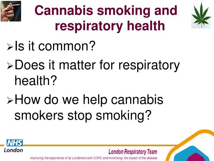 Cannabis smoking and respiratory health