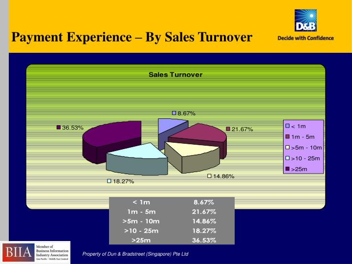 Payment Experience – By Sales Turnover