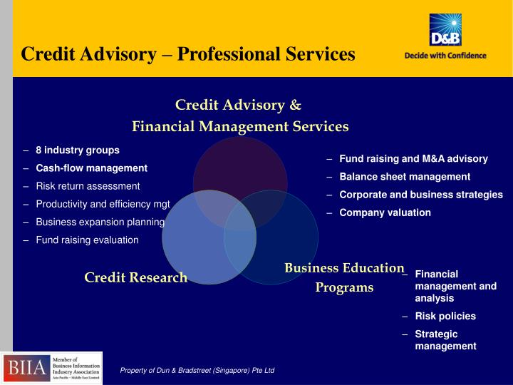 Credit Advisory – Professional Services