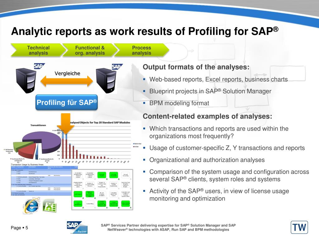 Analytic reports as work results of Profiling for SAP