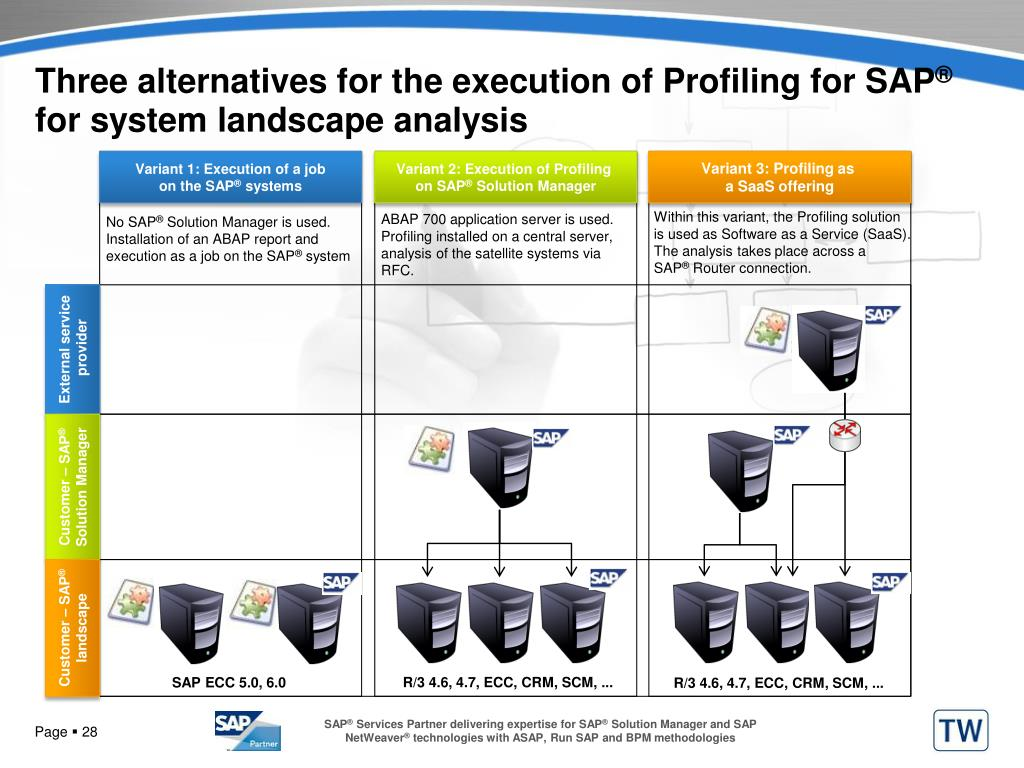 Three alternatives for the execution of Profiling for SAP