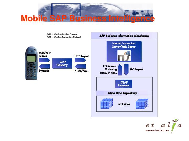 Mobile SAP Business Intelligence