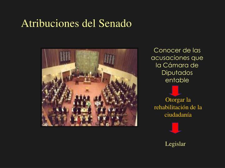 Atribuciones del Senado