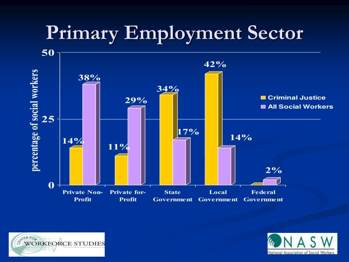 Primary Employment Sector