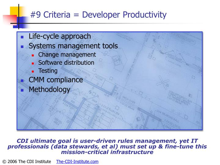 #9 Criteria = Developer Productivity