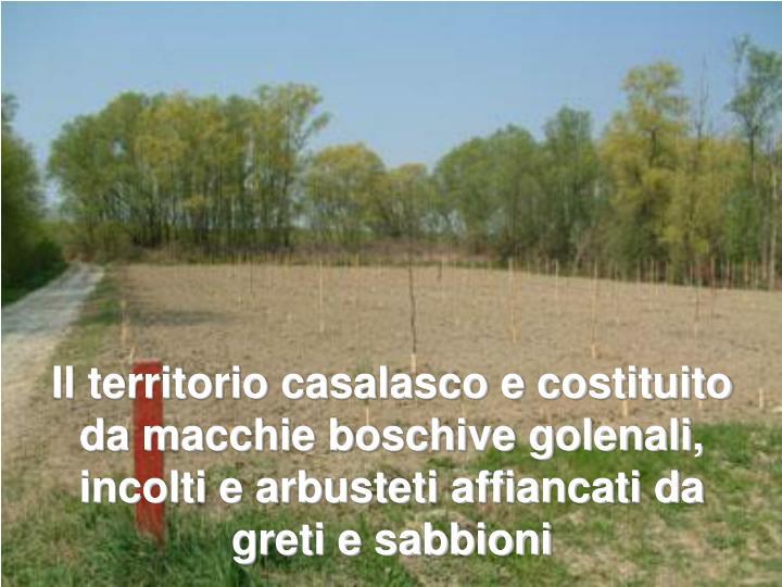 Il territorio casalasco e costituito da macchie boschive golenali, incolti e arbusteti affiancati da greti e sabbioni