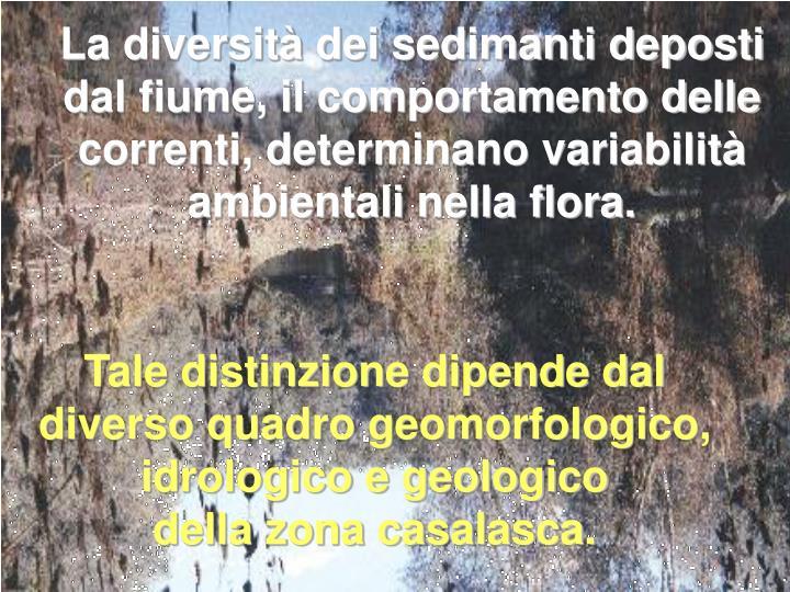 La diversità dei sedimanti deposti dal fiume, il comportamento delle correnti, determinano variabilità ambientali nella flora.