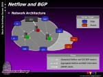 netflow and bgp