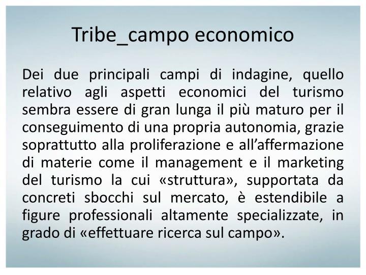 Tribe_campo economico