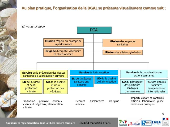 Au plan pratique, l'organisation de la DGAL se présente visuellement comme suit :