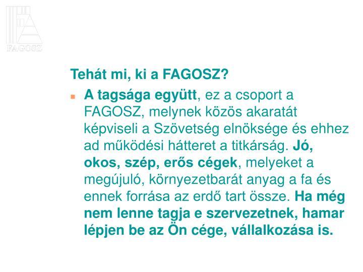 Tehát mi, ki a FAGOSZ?