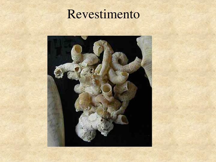 Revestimento