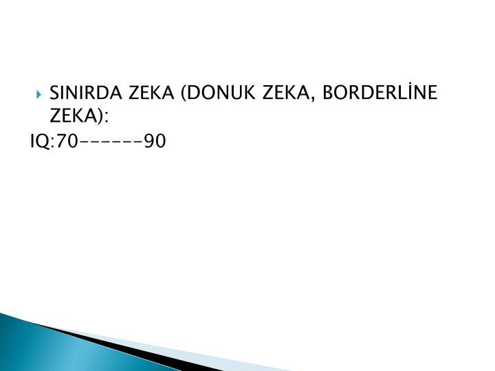 SINIRDA ZEKA